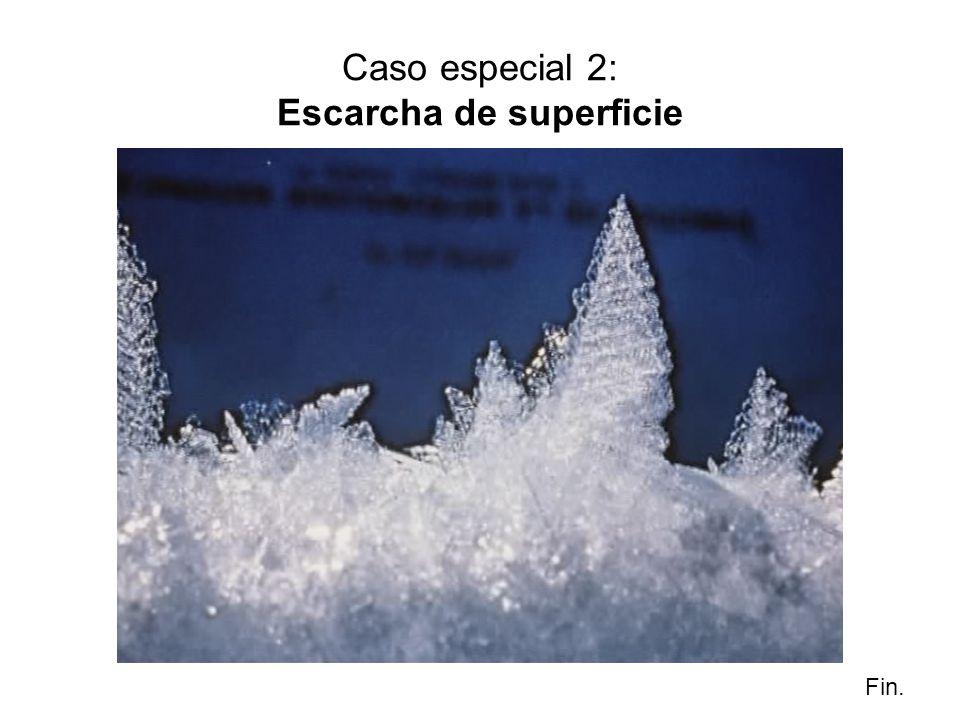 Caso especial 2: Escarcha de superficie