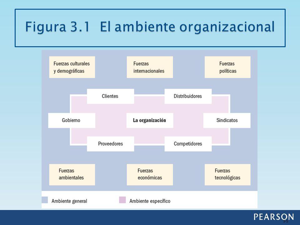 Figura 3.1 El ambiente organizacional