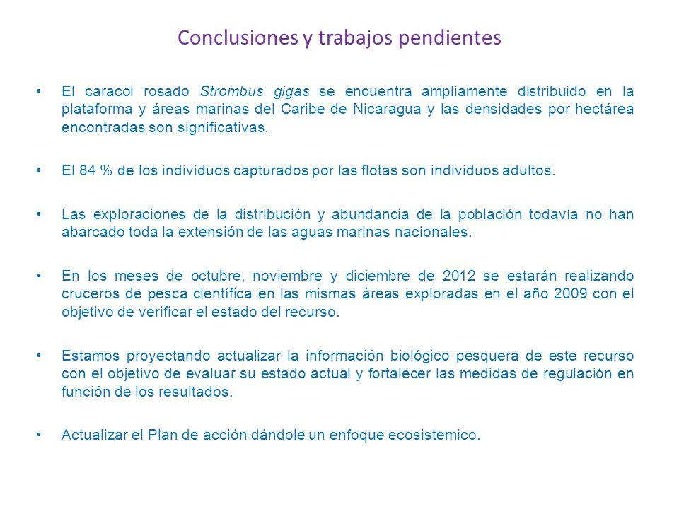 Conclusiones y trabajos pendientes