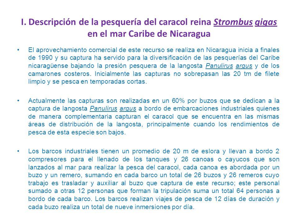 I. Descripción de la pesquería del caracol reina Strombus gigas en el mar Caribe de Nicaragua