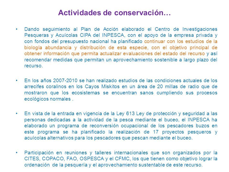 Actividades de conservación…