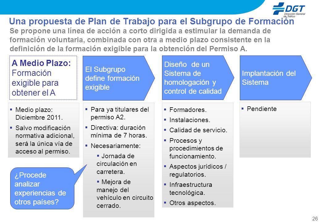 Una propuesta de Plan de Trabajo para el Subgrupo de Formación