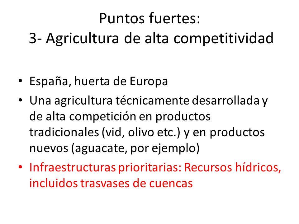 Puntos fuertes: 3- Agricultura de alta competitividad