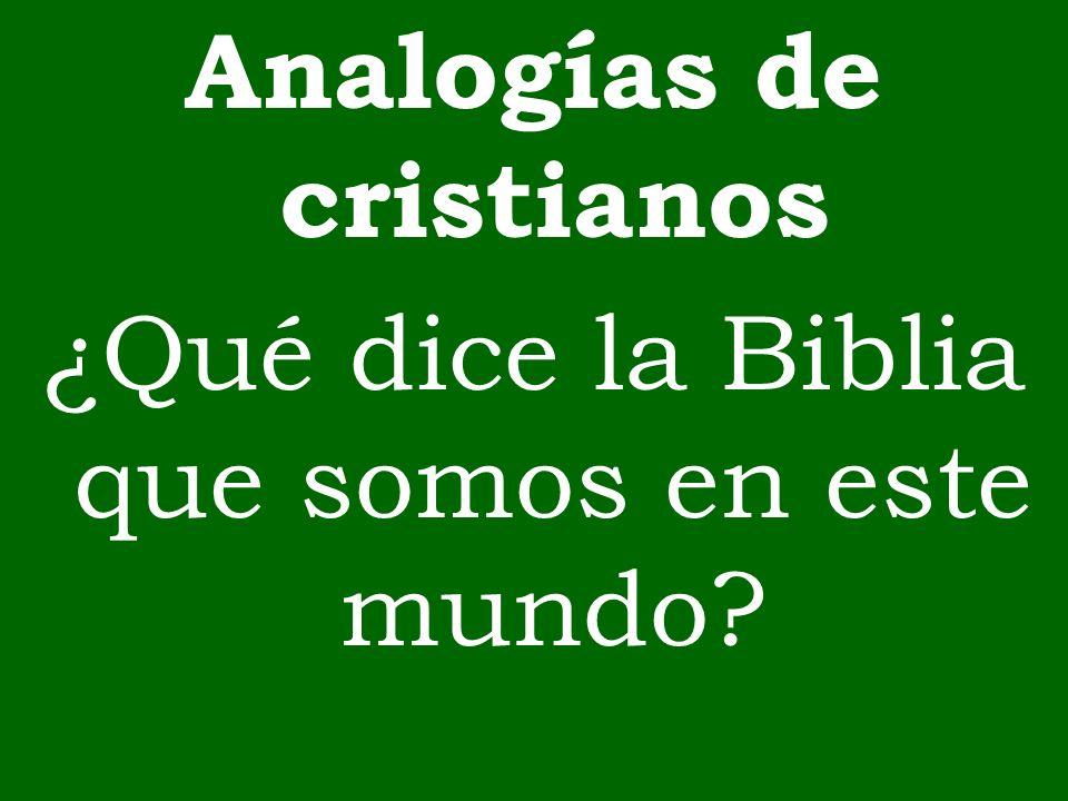 Analogías de cristianos