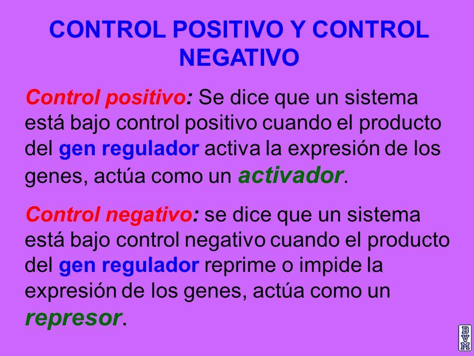 CONTROL POSITIVO Y CONTROL NEGATIVO