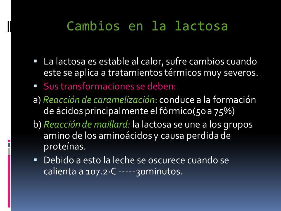 Cambios en la lactosa La lactosa es estable al calor, sufre cambios cuando este se aplica a tratamientos térmicos muy severos.