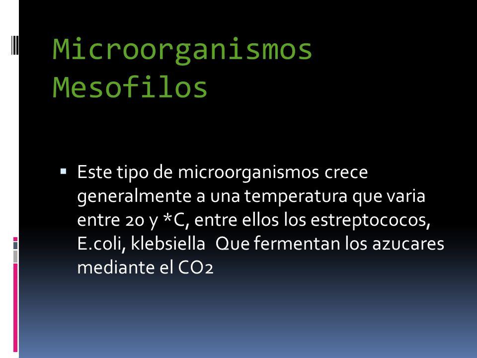 Microorganismos Mesofilos