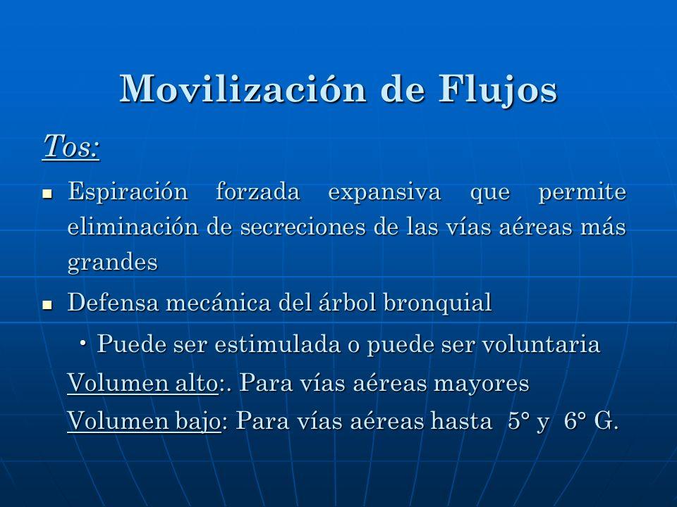 Movilización de Flujos