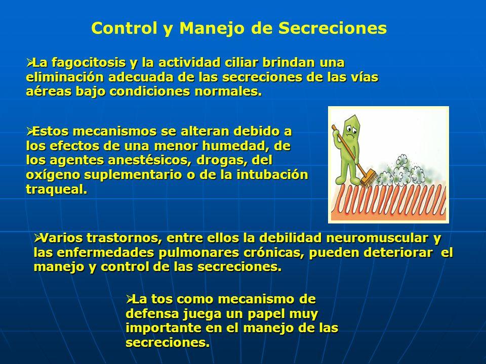 Control y Manejo de Secreciones