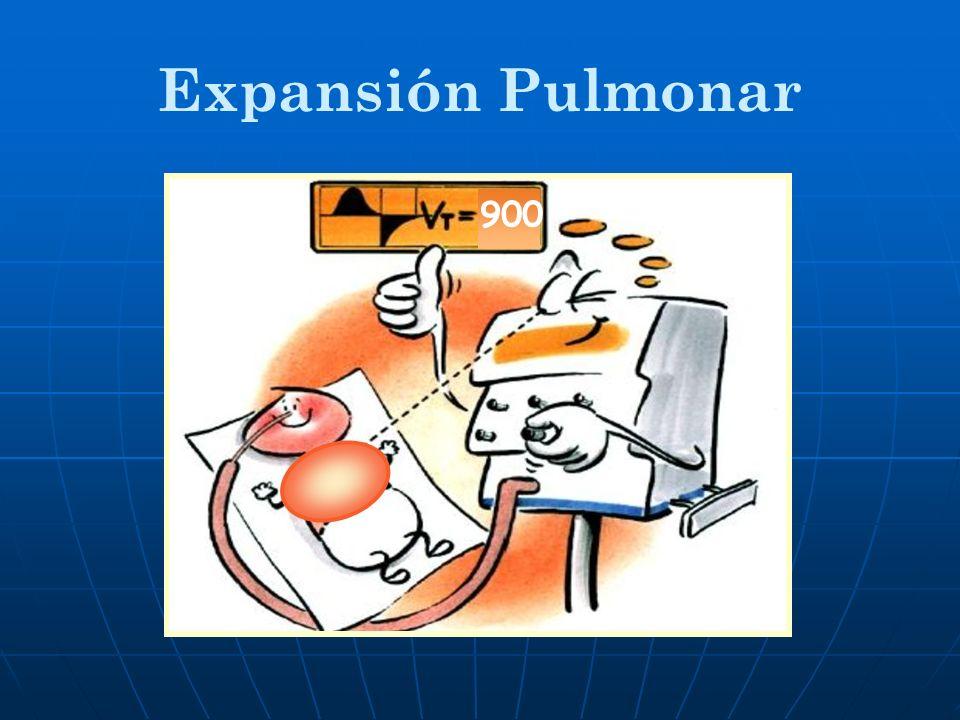 Expansión Pulmonar 900