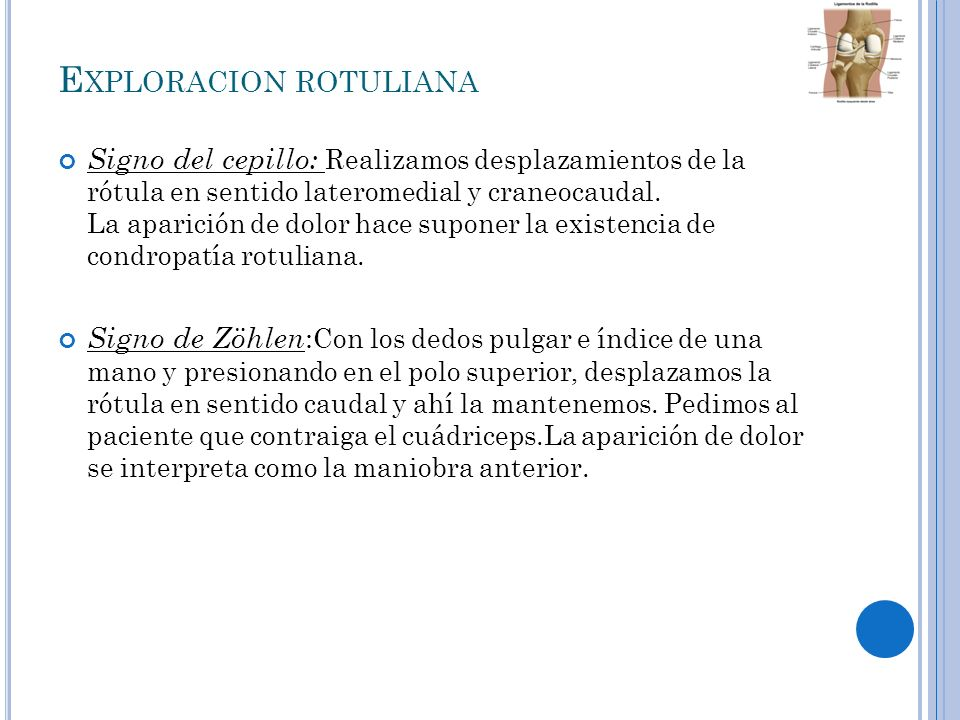 Exploracion rotuliana