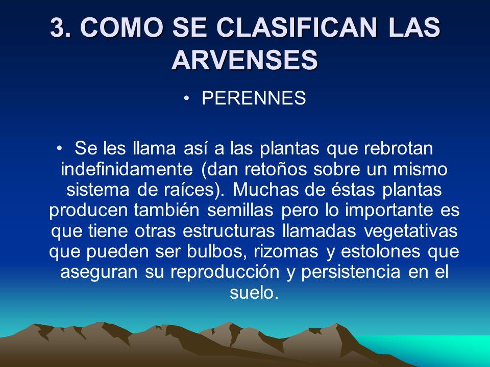 3. COMO SE CLASIFICAN LAS ARVENSES