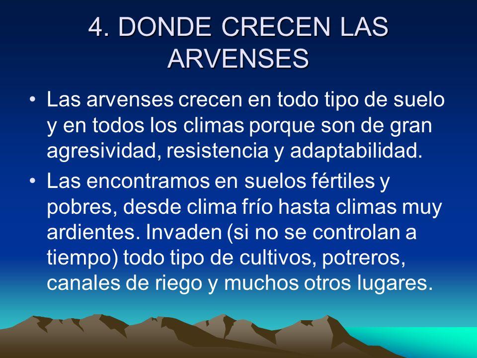 4. DONDE CRECEN LAS ARVENSES
