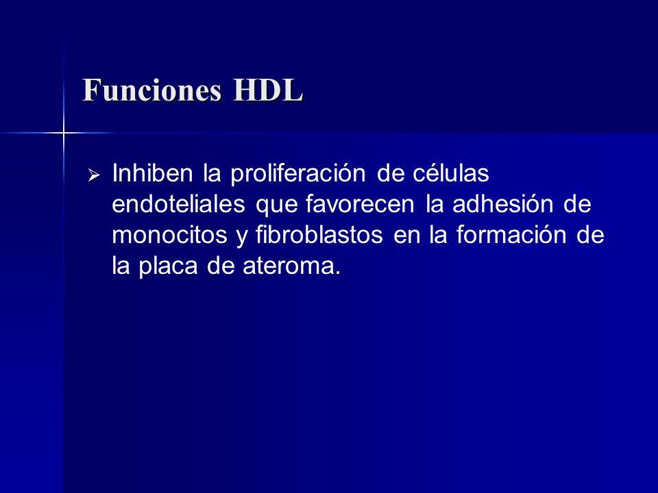 Funciones HDL