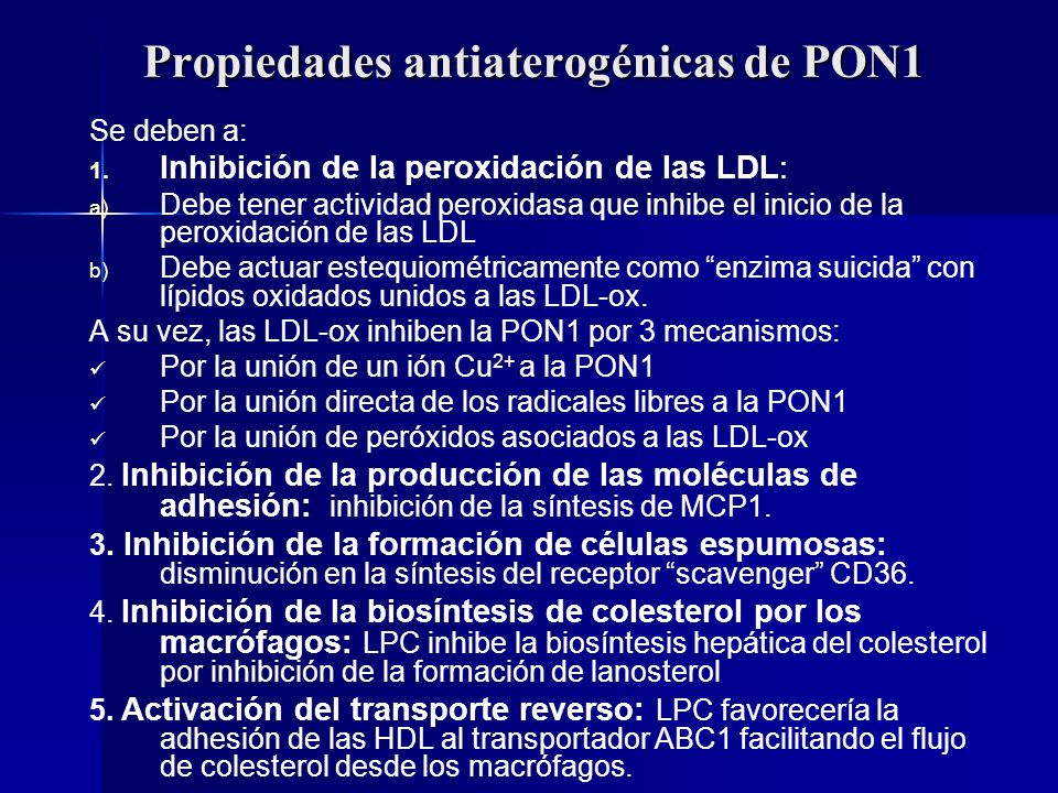 Propiedades antiaterogénicas de PON1