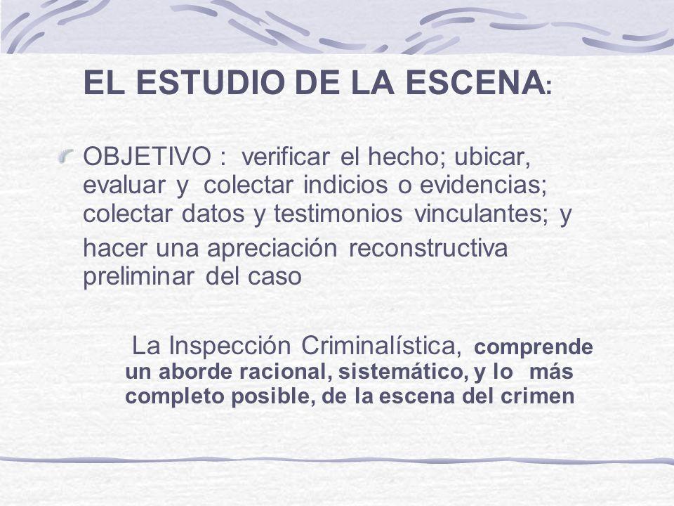 EL ESTUDIO DE LA ESCENA: