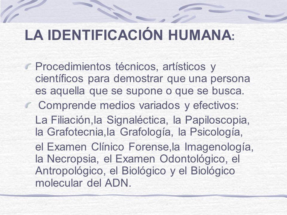 LA IDENTIFICACIÓN HUMANA: