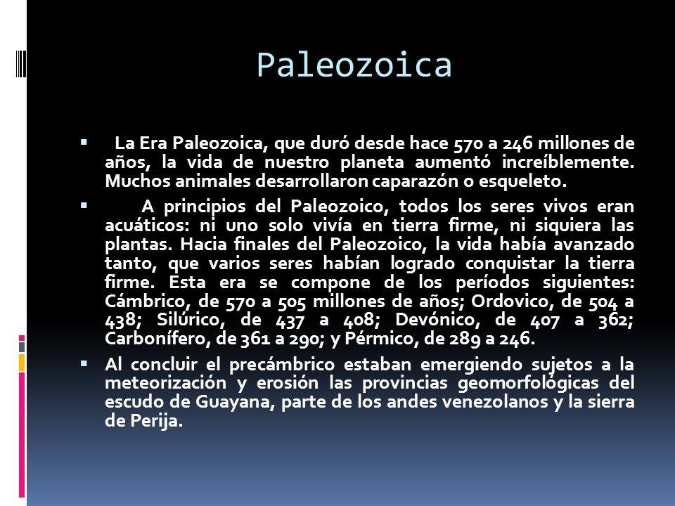 Paleozoica