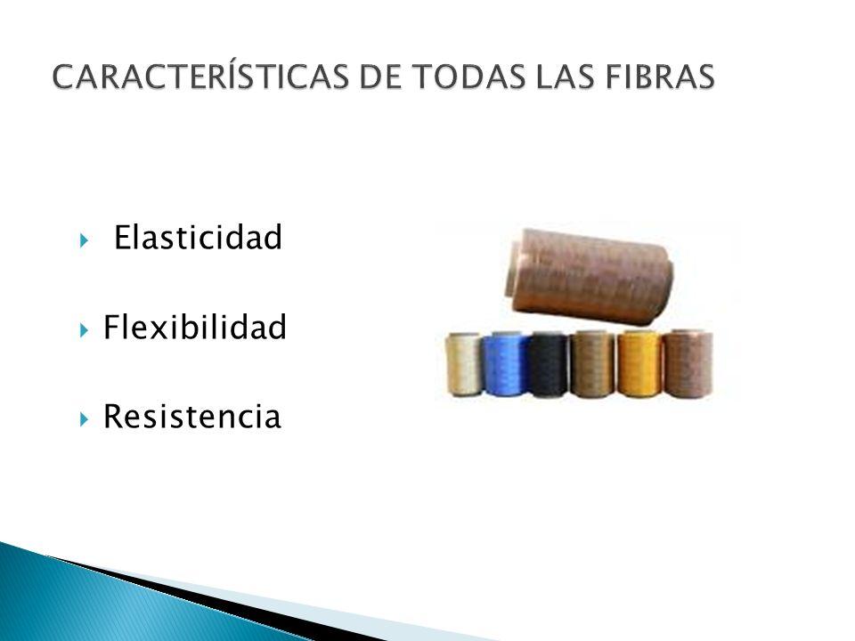 CARACTERÍSTICAS DE TODAS LAS FIBRAS