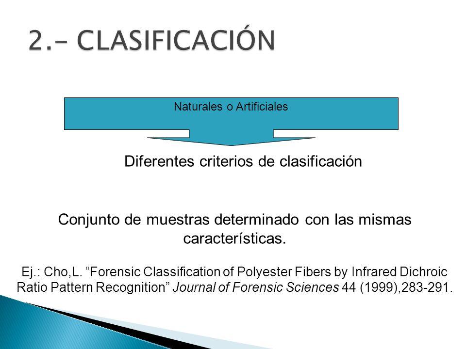 2.- CLASIFICACIÓN Diferentes criterios de clasificación