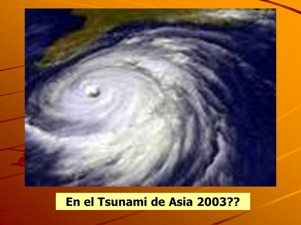 En el Tsunami de Asia 2003