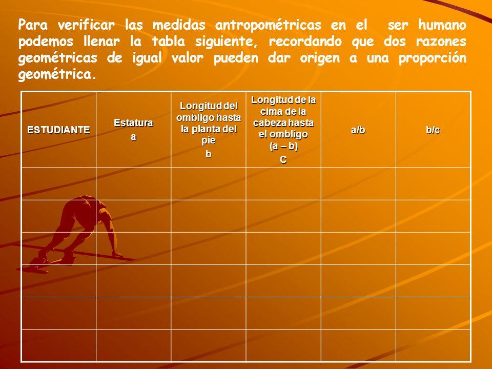 Para verificar las medidas antropométricas en el ser humano podemos llenar la tabla siguiente, recordando que dos razones geométricas de igual valor pueden dar origen a una proporción geométrica.