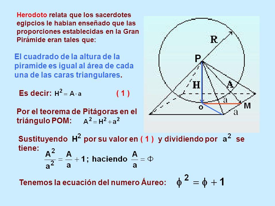 Por el teorema de Pitágoras en el triángulo POM: