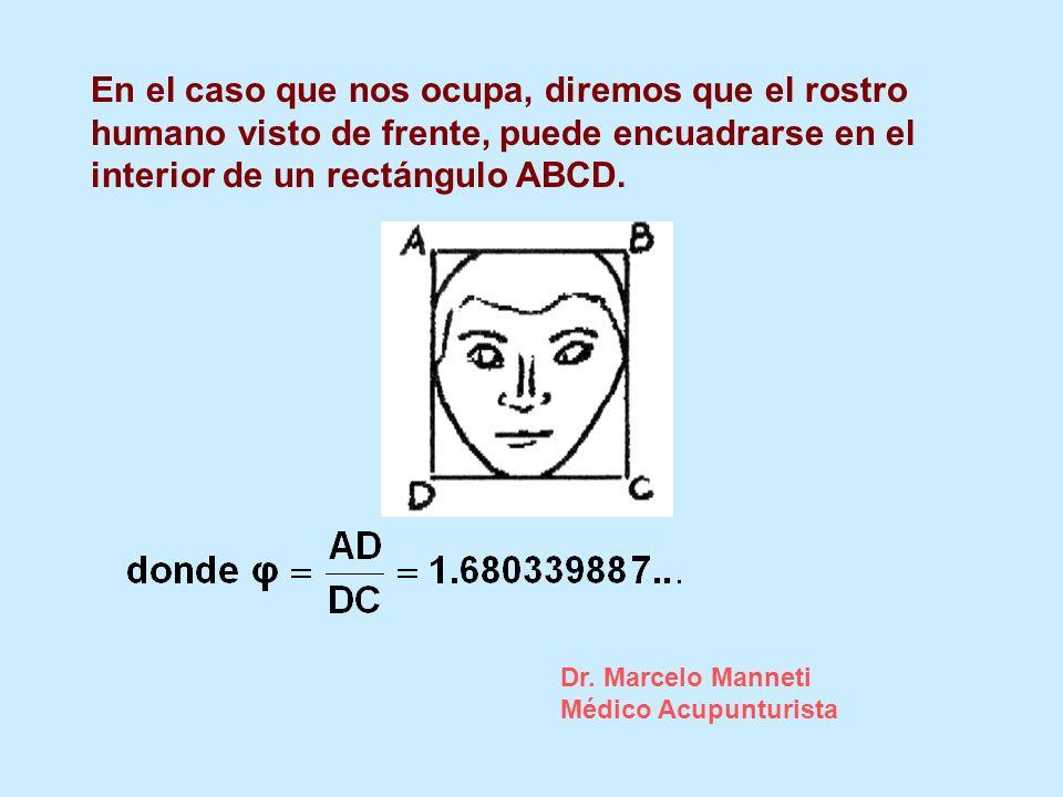 En el caso que nos ocupa, diremos que el rostro humano visto de frente, puede encuadrarse en el interior de un rectángulo ABCD.
