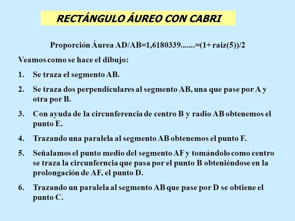 RECTÁNGULO ÁUREO CON CABRI