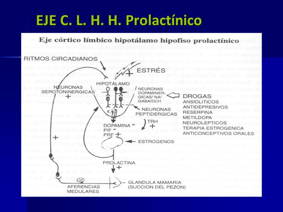 EJE C. L. H. H. Prolactínico Eje prola