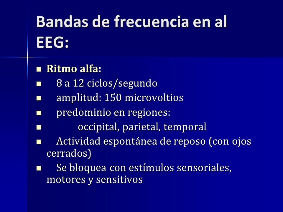 Bandas de frecuencia en al EEG: