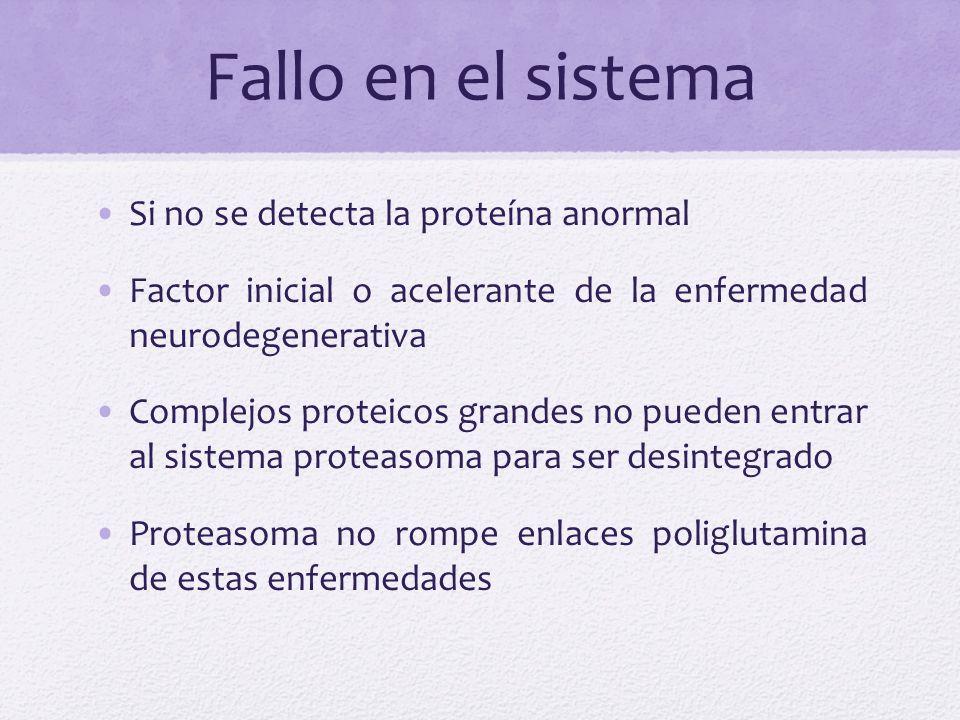 Fallo en el sistema Si no se detecta la proteína anormal