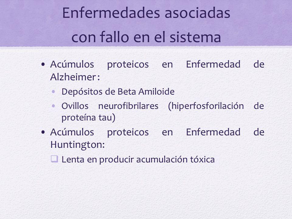 Enfermedades asociadas con fallo en el sistema