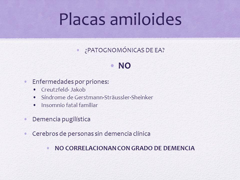 NO CORRELACIONAN CON GRADO DE DEMENCIA