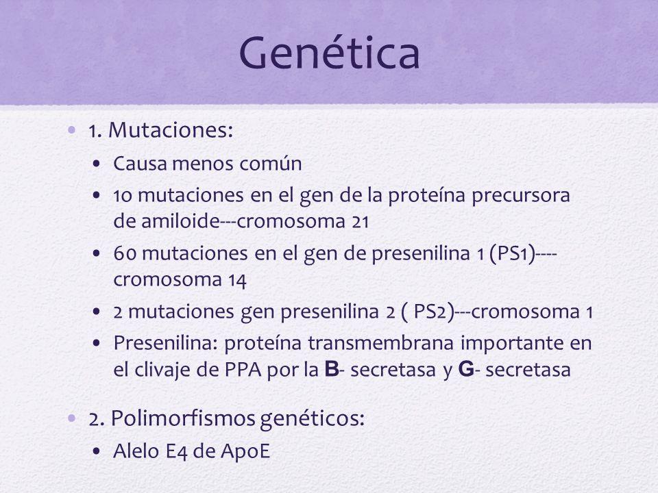 Genética 1. Mutaciones: 2. Polimorfismos genéticos: Causa menos común