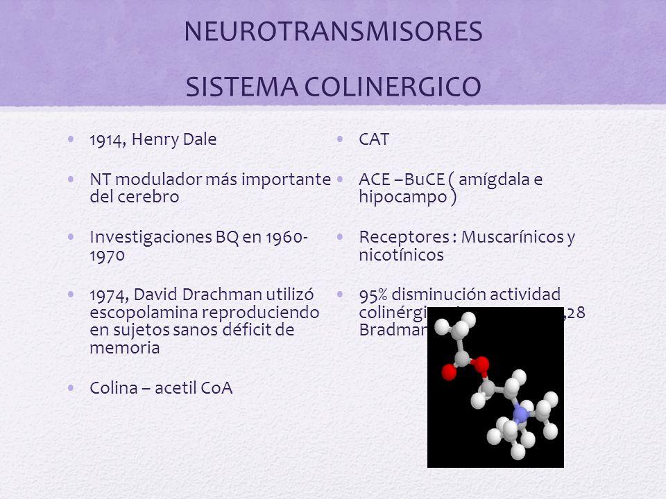 NEUROTRANSMISORES SISTEMA COLINERGICO