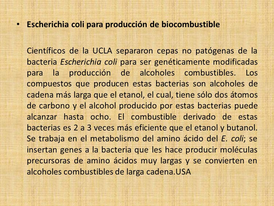 Escherichia coli para producción de biocombustible