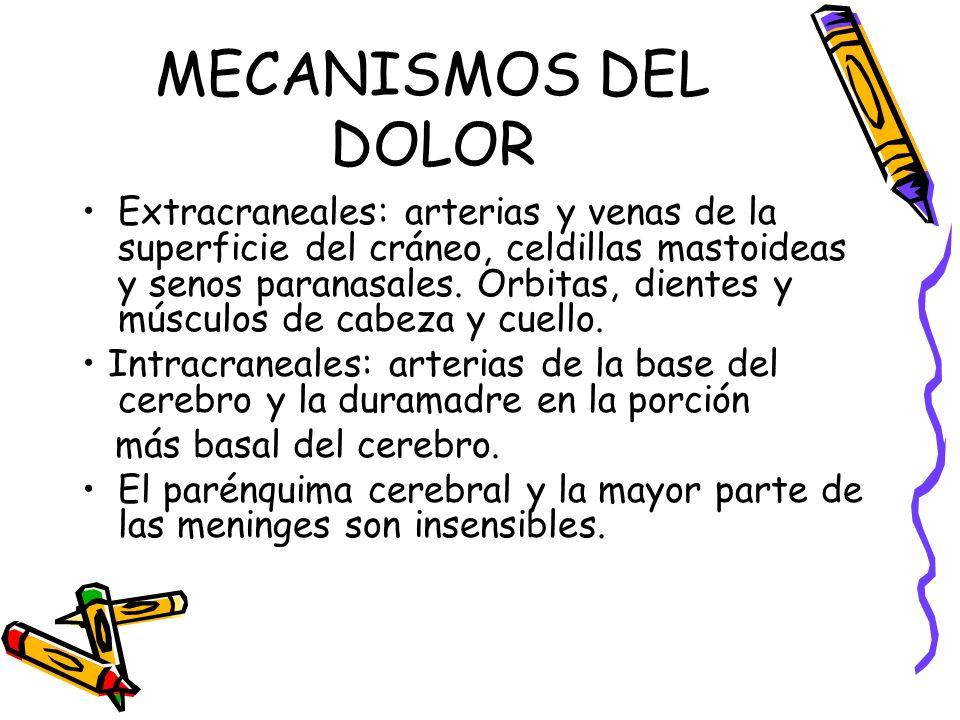 MECANISMOS DEL DOLOR