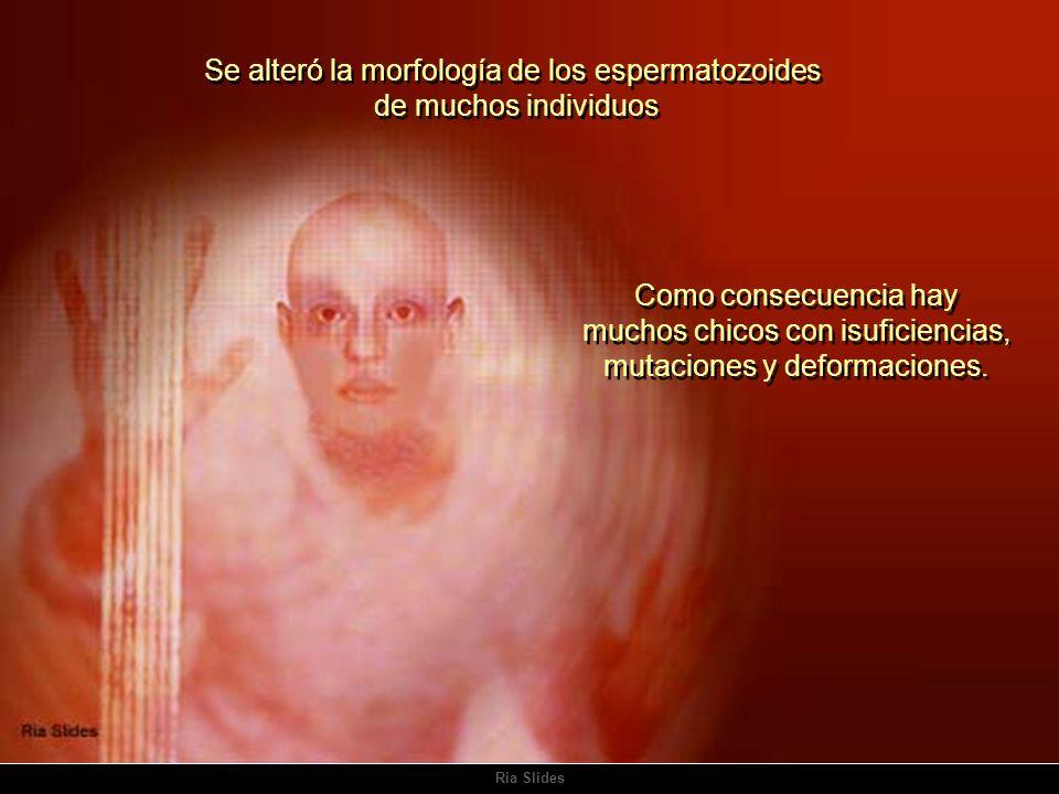 Se alteró la morfología de los espermatozoides