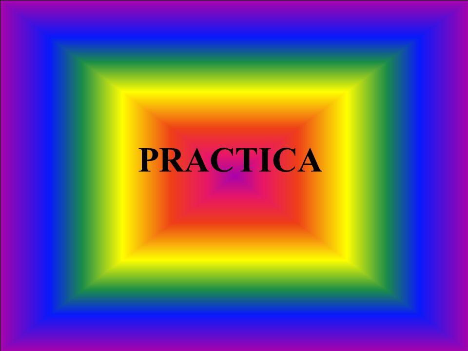 PRACTICA