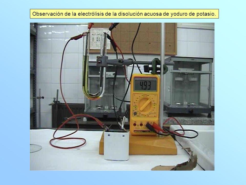 Observación de la electrólisis de la disolución acuosa de yoduro de potasio.