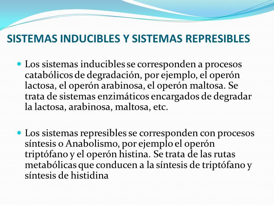 SISTEMAS INDUCIBLES Y SISTEMAS REPRESIBLES