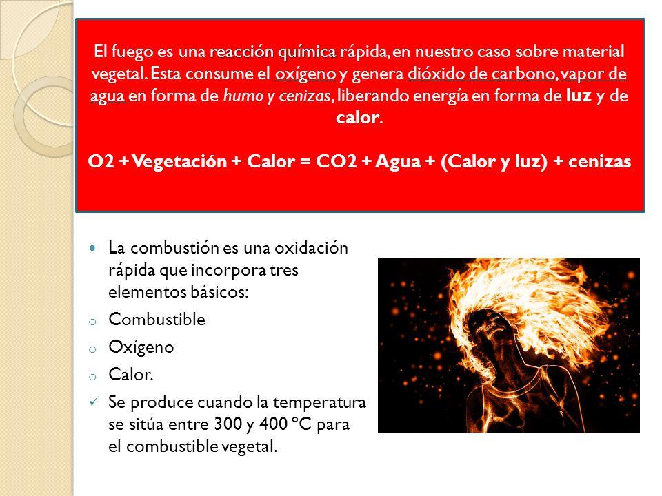 O2 + Vegetación + Calor = CO2 + Agua + (Calor y luz) + cenizas