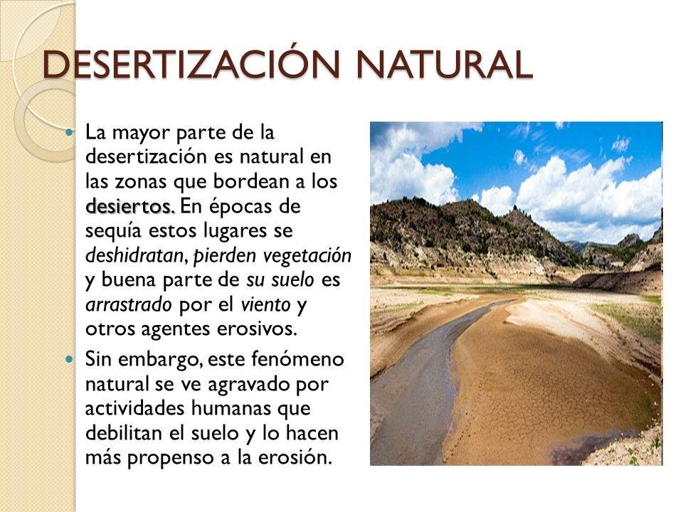 DESERTIZACIÓN NATURAL