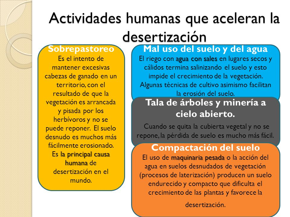 Actividades humanas que aceleran la desertización