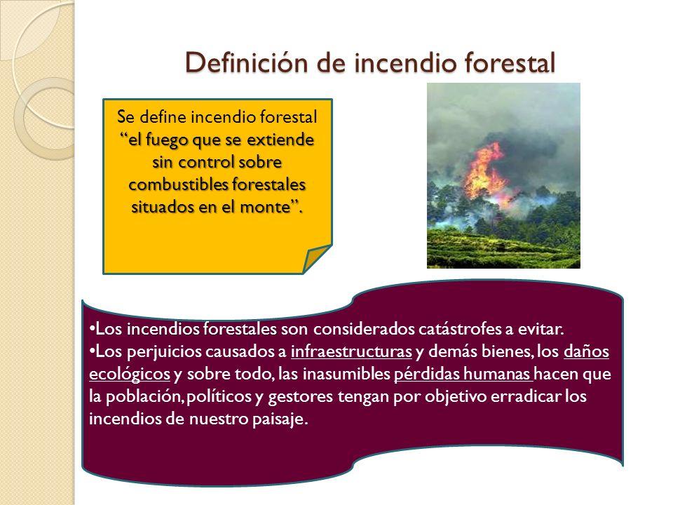 Definición de incendio forestal