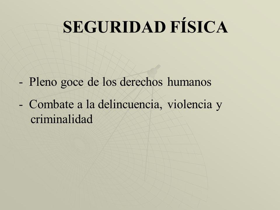 SEGURIDAD FÍSICA - Pleno goce de los derechos humanos