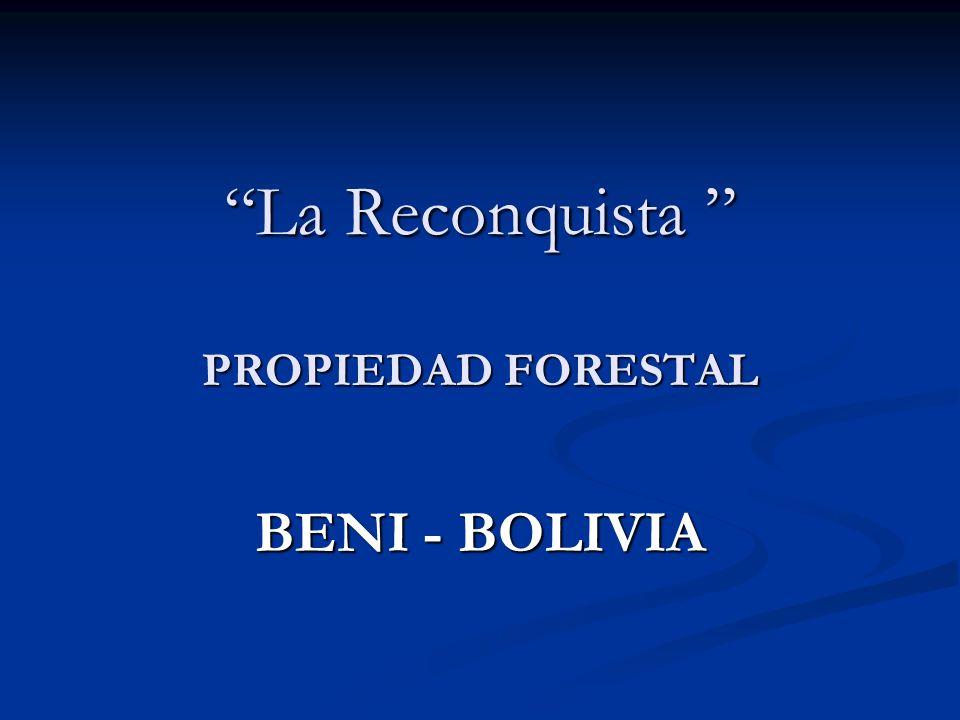 La Reconquista PROPIEDAD FORESTAL