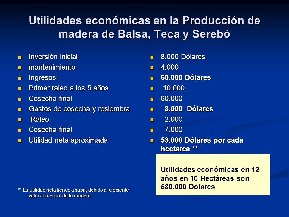 Utilidades económicas en la Producción de madera de Balsa, Teca y Serebó