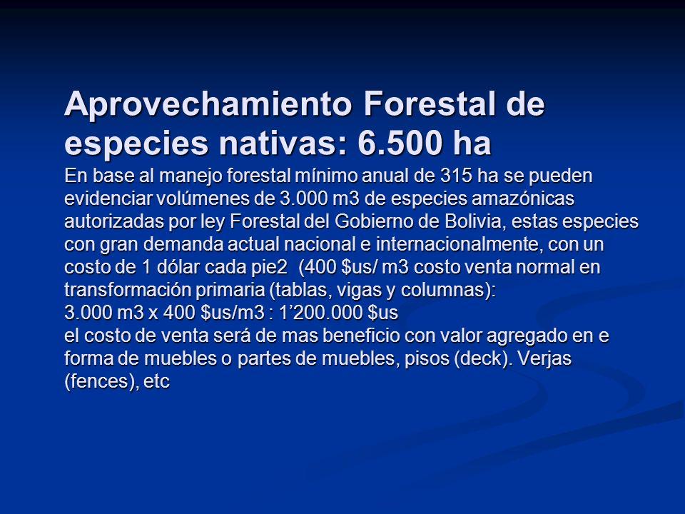 Aprovechamiento Forestal de especies nativas: 6